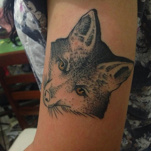 black-and-grey-fox-tatto-upper-arm