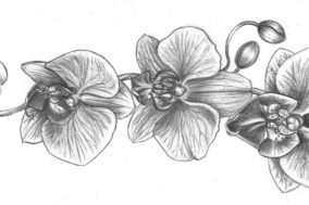 orchid tattoo drawing